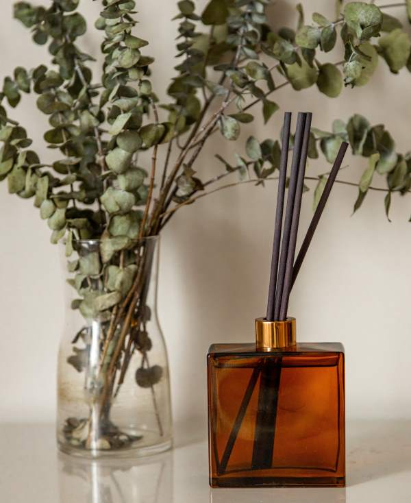 Diffuser and Eucalyptus Branches