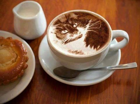 Cat Image in Coffee Cup