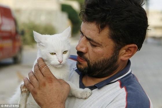 Alaa and stray cat
