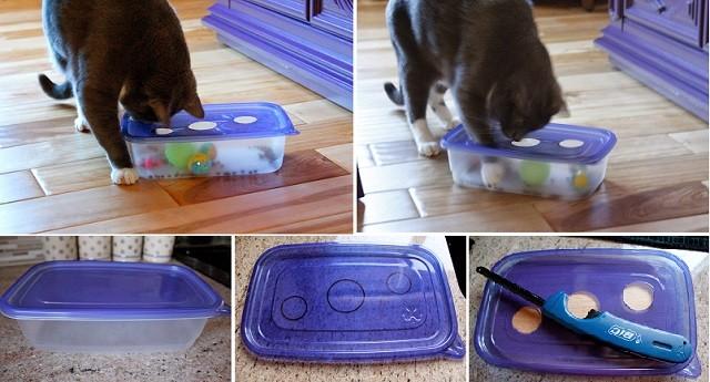 Tupperware Cat Toy
